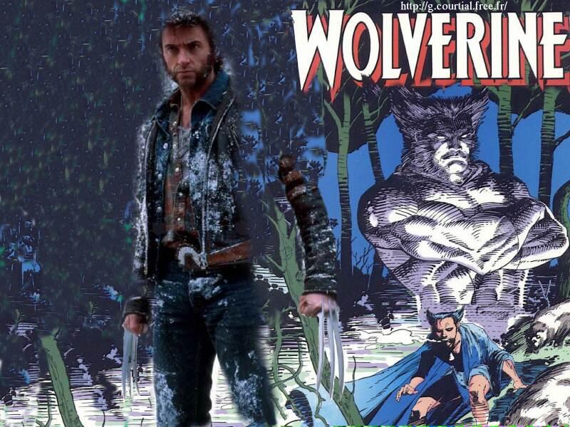 http://g.courtial.free.fr/Wolverine_wallpaper_fond_d_ecran.jpg